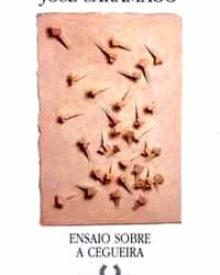 Resumo do livro, Ensaio Sobre a Cegueira, José Saramago